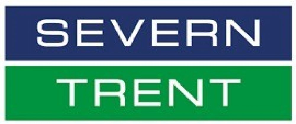 Severn Trent Swinglift Crane – Brief – Logo
